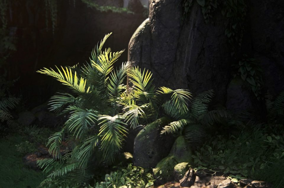 (RE)INVENTING NATURE