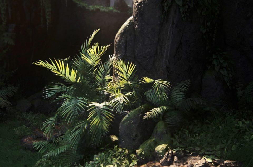 Tentoonstelling:  (Re)Inventing Nature